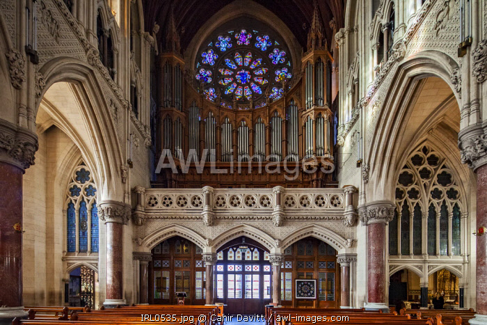 The nave, organ and choir balcony of St Colman's Cathedral, Cobh, Co. Cork, Munster,Ireland.