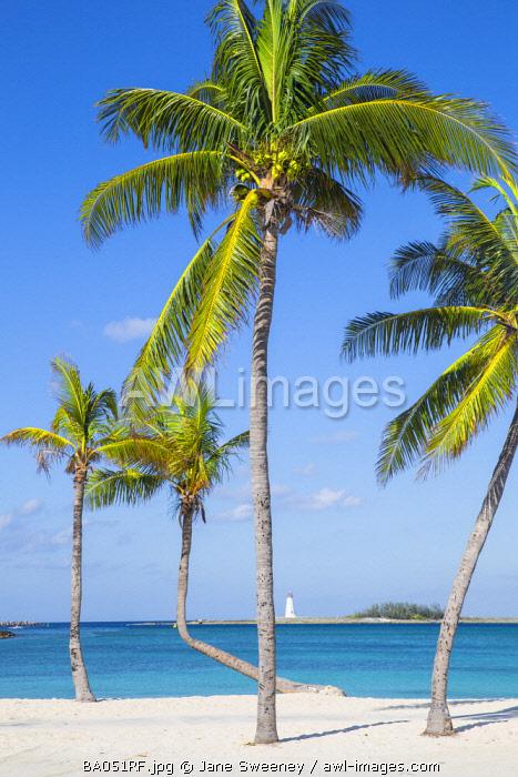Caribbean, Bahamas, Providence Island, Nassau, Palm trees on white sand beach with lighthouse in distance