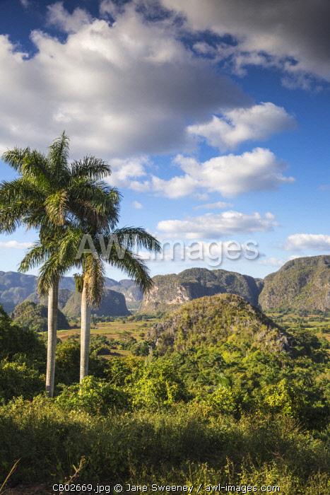 Cuba, Pinar del Río Province, Vinales