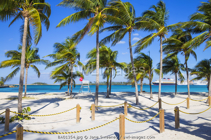 Caribbean, Bahamas, Providence Island, Nassau, Palm trees on white sand beach, with cruise ships in distance