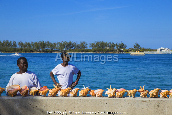 Caribbean, Bahamas, Providence Island, Nassau, Men selling conch shells at harbour front