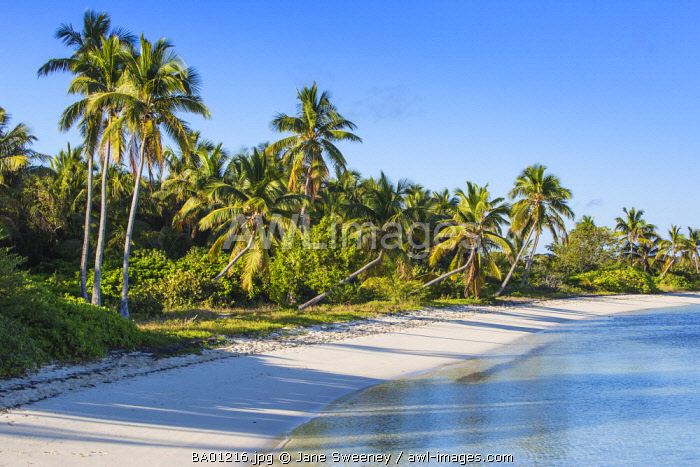 awl-images.com - Bahamas / Bahamas, Abaco Islands, Elbow Cay, Tihiti beach