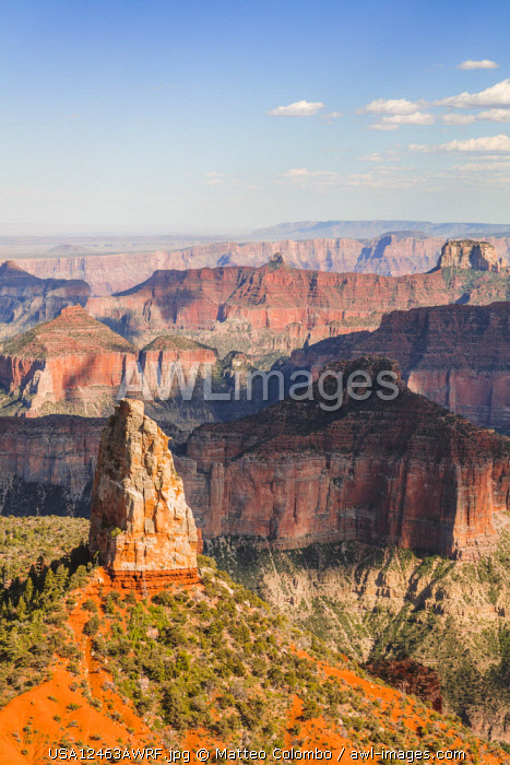 Point Imperial, North Rim, Grand Canyon National Park, Arizona, USA