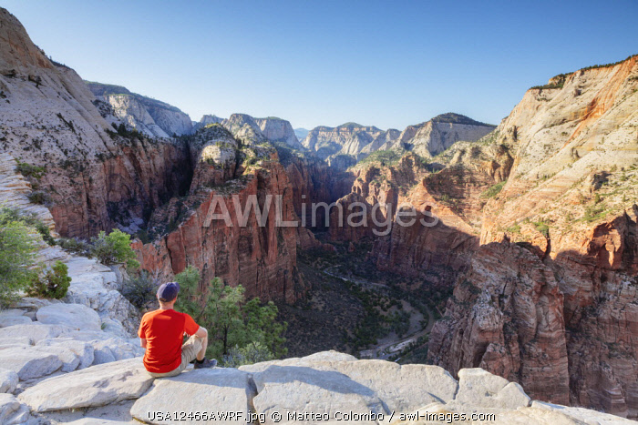 Angel's landing overlook, Zion Canyon National Park, Utah, USA (MR)