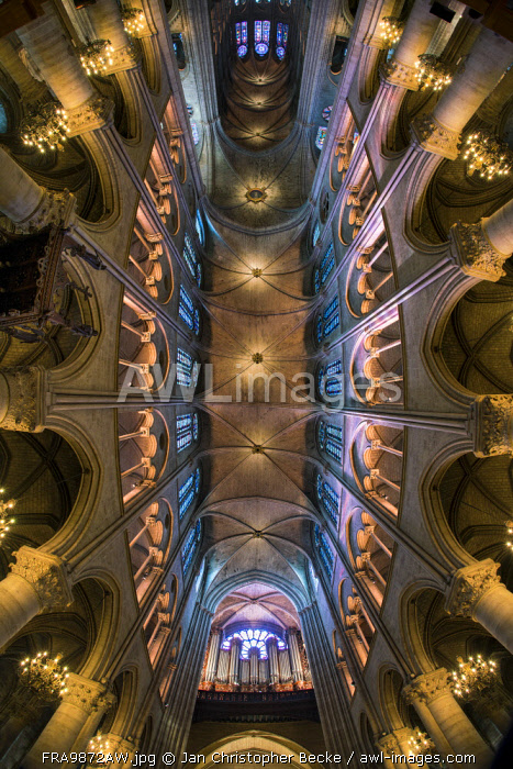 Ceiling Of Notre Dame Cathedral