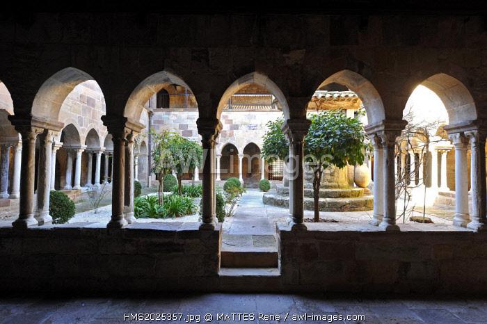 France, Var, Frejus, Saint Leonce cathedral, the cloister