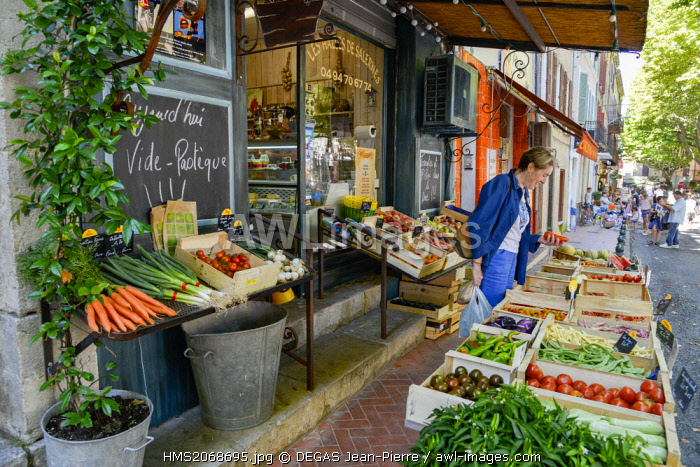 France, Var, Salernes, Theodore Bouge Courts, woman making her shopping on a stall of a fruit seller and vegetables