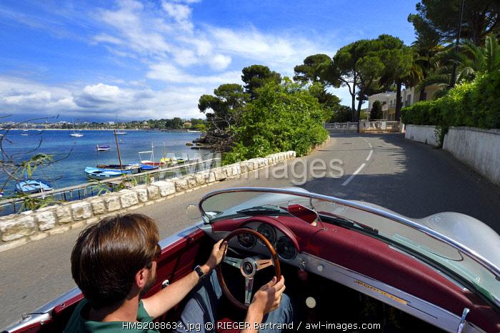 France, Alpes Maritimes, Antibes, Cap d'Antibes, along the Gulf Juan on the Boulevard Marechal Juin aboard a collection convertible Porsche Speedster 356