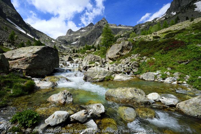 France, Alpes Maritimes, Parc National du Mercantour (Mercantour national park), Haute Vesubie, Gordolasque valley