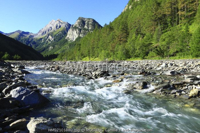 France, Hautes Alpes, regional park of Queyras, Ristolas, The Echalp, Le Guil