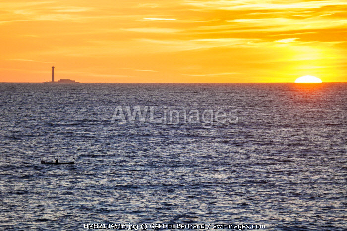 France, Bouches du Rhone, Marseille, sunset over the sea and the island of Planier
