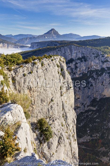 France, Alpes de Haute Provence, regional natural reserve of Verdon, Grand Canyon of Verdon, cliffs of the Barres of Escalès seen by the belvedere of Carelle