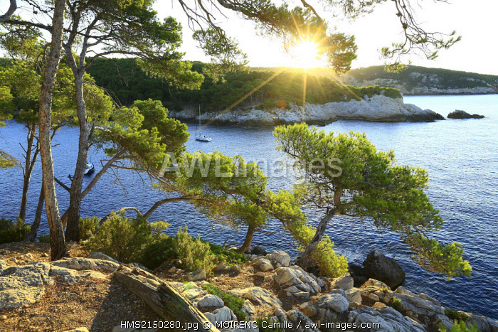 France, Var, Saint Cyr sur Mer, Creek of Port d'Alon