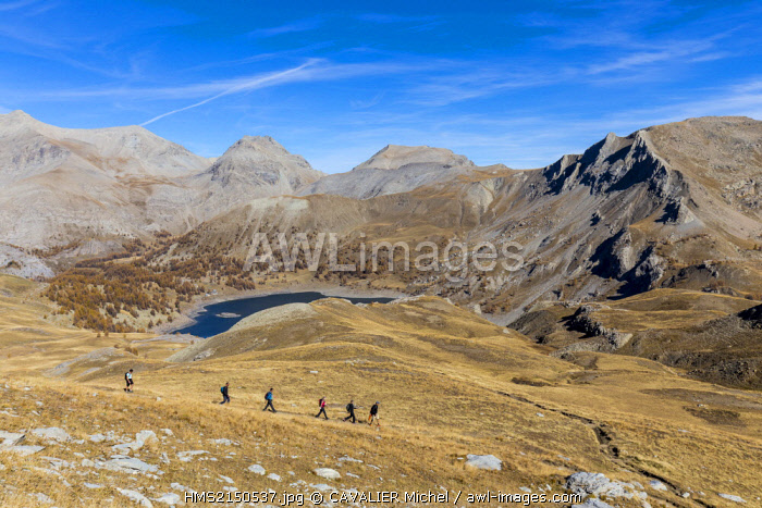 France, Alpes de Haute Provence, Parc National du Mercantour (National park of Mercantour), Haut Verdon, lake of Allos (2226 m), walkers on the path of the pass of Encombrette (2527 m)