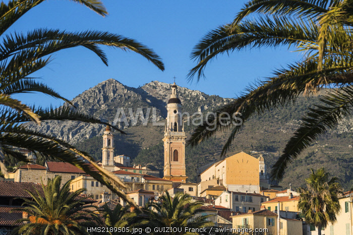 France, Alpes Maritimes, Menton, the Old Town and Saint Michel basilica