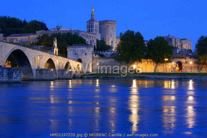 France, Vaucluse, Avignon, Saint Benezet Bridge (12th century) on the Rhone and the Cathedral of Doms (12th century) listed as World Heritage by UNESCO