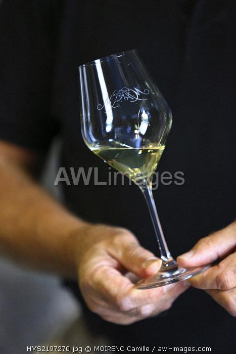 France, Vaucluse, Mormoiron Domaine du Tix, AOC Ventoux, tasting, collecting owner Philippe Danel