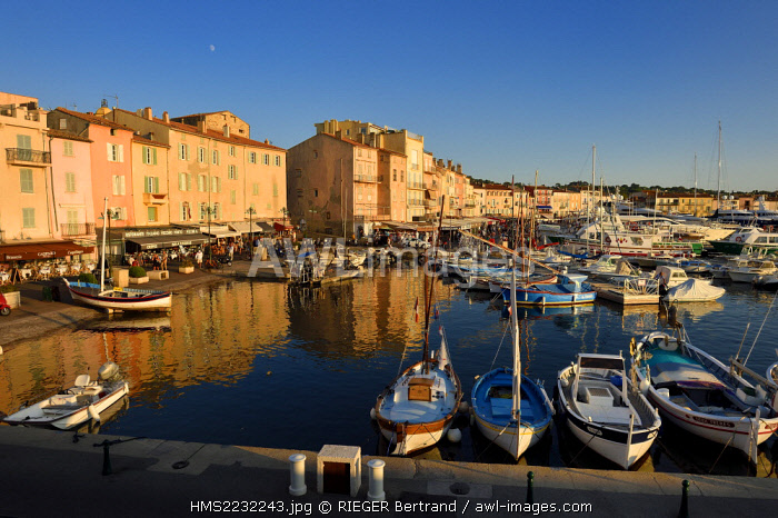 France, Var, Saint-Tropez, pointus boats (traditional Mediterranean boats) in the harbour