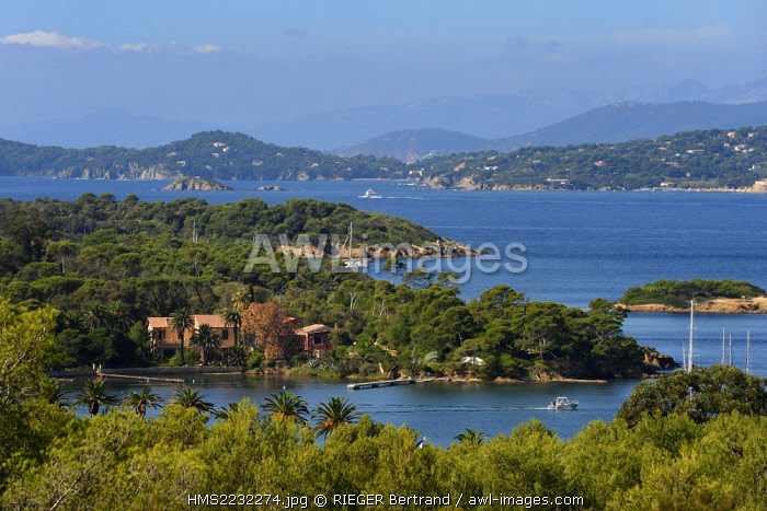France, Var, Iles d'Hyeres, Parc National de Port Cros (National park of Port Cros), Porquerolles island, the north coast towards Anse du Bon Renaud and the peninsula of Giens in the background