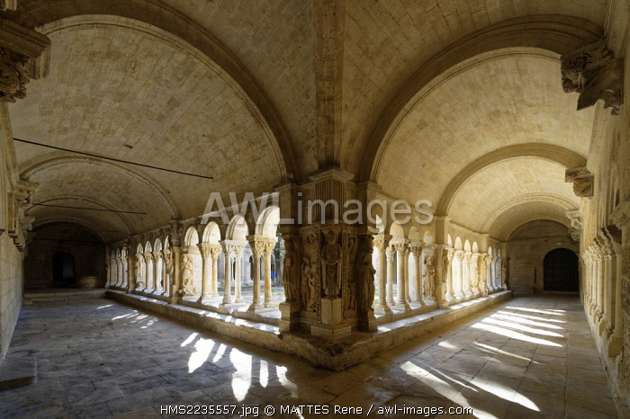 France, Bouches du Rhone, Arles, Church of St Trophime of the 12th-15th century (UNESCO), the cloister