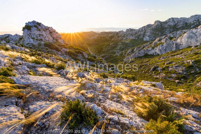 France, Bouches du Rhone, Eyguières, Massif of Alpilles, Regional Natural reserve of Alpilles, blocks Rocky Mountains of Civadières