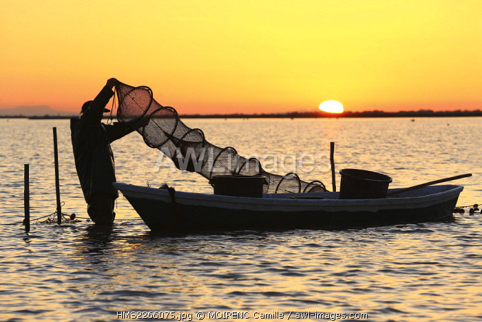 France, Bouches du Rhone, Parc naturel regional de Camargue (Regional Natural Park of Camargue), Saintes Maries de la Mer, said the Imperial pond, fishing