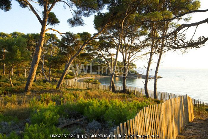 France, Var, Bormes les Mimosas, Chateau Malherbe