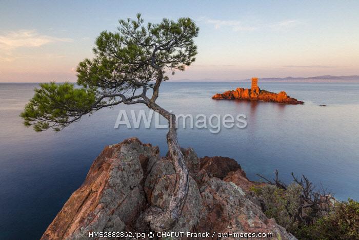 France, Var, Corniche de l'Esterel, Saint Raphael, Ile d'Or in front of the Cap du Dramont