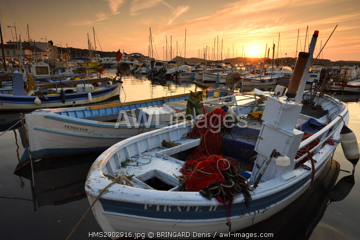 France, Var, Six Fours les Plages, hamlet Le Brusc, the harbor, traditional fishing boats, the Pointus