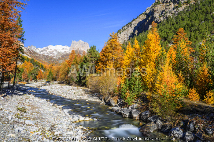 France, Hautes-Alpes, Nevache, Vallee Etroite in fall, Grand Seru (alt : 2889 m) in the background