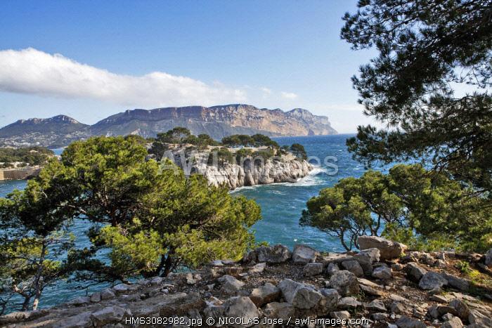 France, Bouches du Rhone, Cassis, Calanques du Port Pin