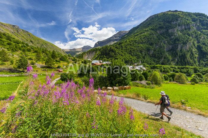 France, Hautes-Alpes, Orcieres Merlette, Prapic