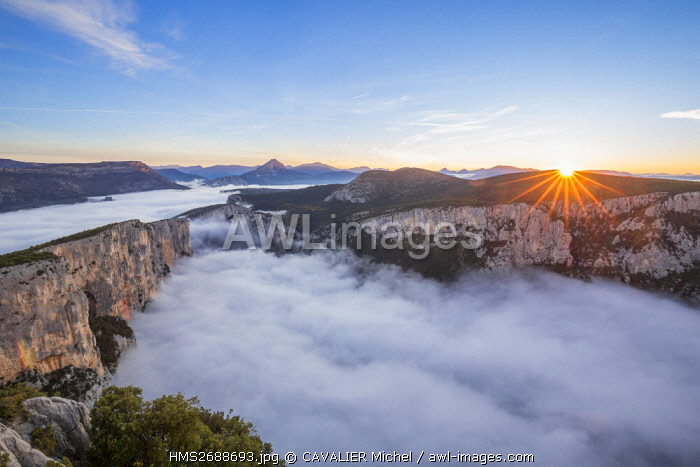 France, Alpes de Haute-Provence, regional natural reserve of Verdon, Grand Canyon of Verdon, cliffs of the Barres of Escalès seen by the belvedere of the Dent d'Aire, morning autumn fogs
