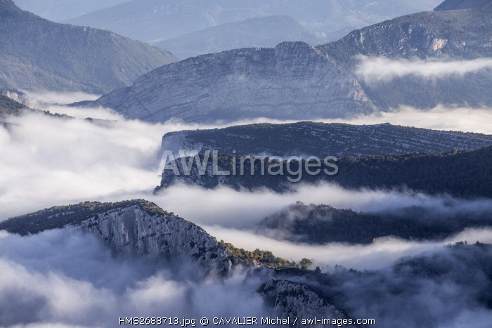 France, Alpes de Haute-Provence, regional natural reserve of Verdon, Grand Canyon of Verdon, the cliffs of the Corridor Samson emerges over the mist