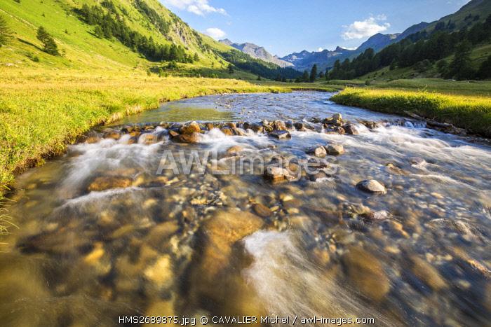 France, Alpes de Haute Provence, national park of Mercantour, Haute Hubaye, valley of Fourane, the river Hubayette