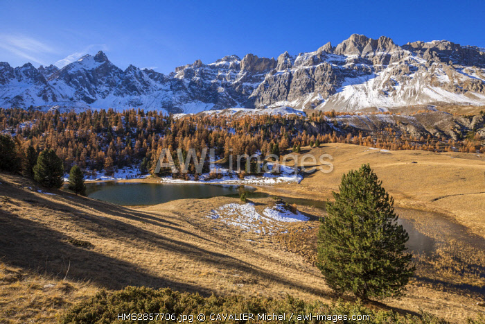 France, Hautes Alpes, regional natural reserve of Queyras, Ceillac, lake des pres Soubeyrand or lake Mirror (2214m) dominated by the Peaks of Font Sancte (3385m) and the Crête des Veyres (3000m)