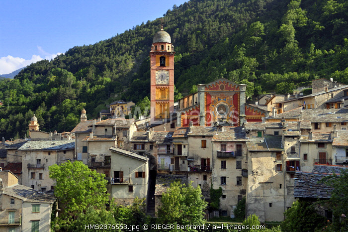 France, Alpes Maritimes, Roya Valley (Nice hinterland), at the foot of the Mercantour National Park, Tende, Collegiate Church of Notre Dame de l'Assomption (Our Lady of the Assumption) in a tangle of flagstone roofs