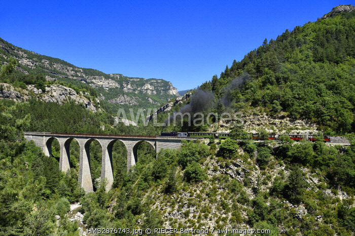 France, Alpes de Haute Provence, les scaffarels around Annot, the Train des Pignes historic train crossing the Donne viaduct