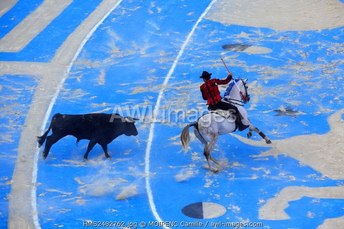 France, Bouches du Rhone, Arles, the Arena, Rice Fest, Bullfight Goyesque scenography Marie Hugo