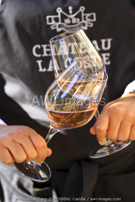France, Bouches du Rhone, Le Puy Sainte Reparade, Chateau La Coste, AOP Coteaux d'Aix, restaurant (Compulsory Mention)
