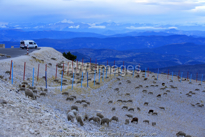 France, Vaucluse, Mont Ventoux, Col storms, south side