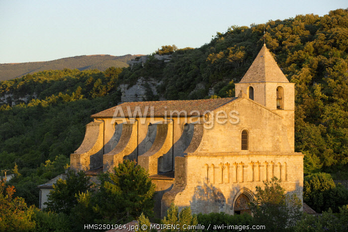 France, Vaucluse, regional park of Luberon, Saignon, Romanesque church of Our Lady of Pity 12th