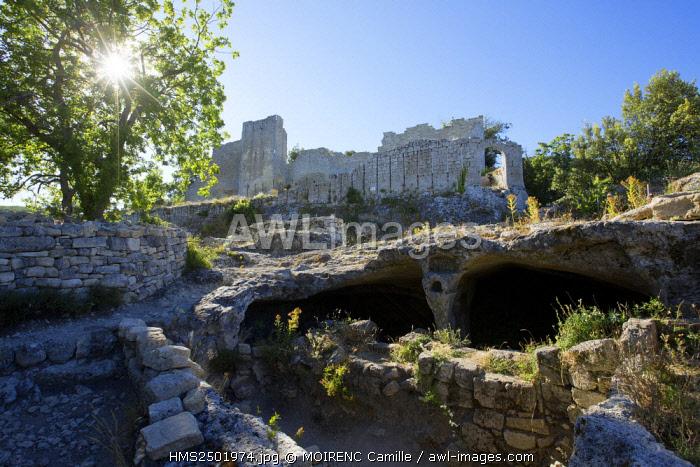 France, Vaucluse, regional park of Luberon, Buoux Fort