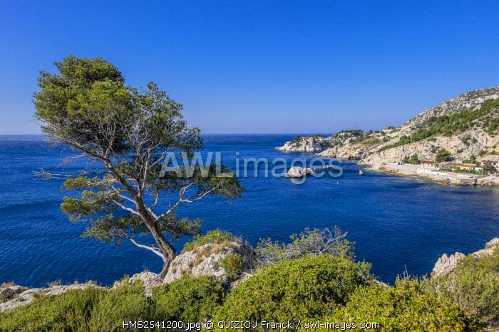 France, Bouches du Rhone, Blue Coast, Le Rove, La Vesse Calanque