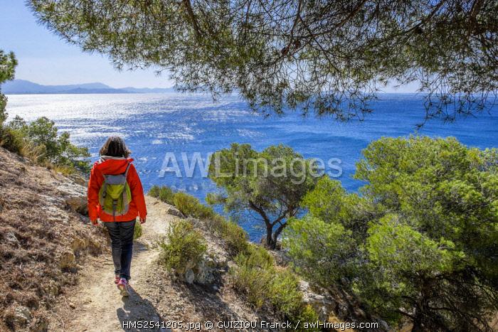 France, Bouches du Rhone, Blue Coast, hiking on the coastal footpath between Niolon and L'Estaque