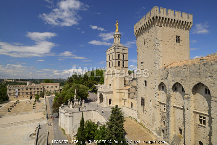 France, Vaucluse, Avignon, Doms cathedral dating from the 12th century and the Papal Palace dating from the 14th century with its tower of the Strikeand listed UNESCO World Heritage