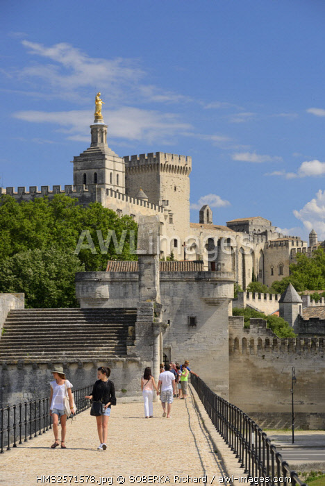 France, Vaucluse, Avignon, Saint Benezet bridge on the Rhone dating from the 12th century with in the background Cathedral of Doms dating from the 12th century and the Papal Palace listed UNESCO World Heritage