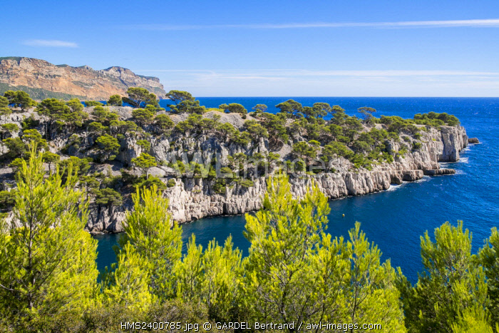 France, Bouches du Rhone, Cassis, the Calanques National Park, the cove of Port Miou