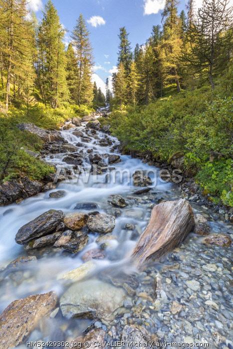France, Hautes Alpes, Parc Naturel Regional du Queyras (Natural regional park of Queyras), Ceillac, brook of Pisse