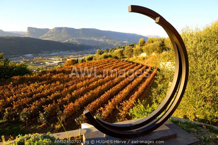France, Alpes Maritimes, Nice, Domaine du Toasc, vineyard